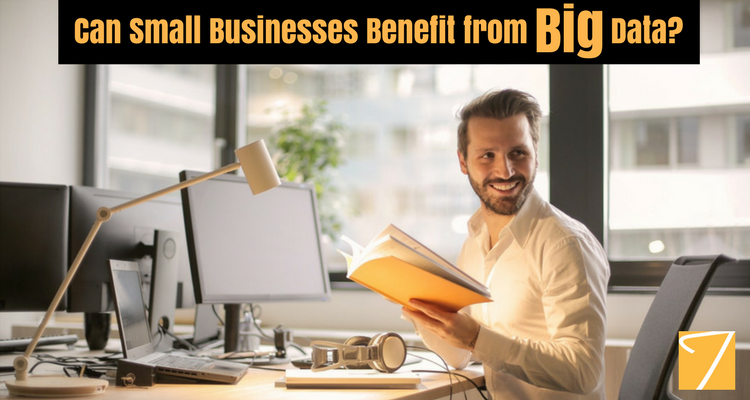 Can Small Businesses Benefit from Big Data?